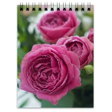 <b>Блокнот Розовые розы</b> #2671979 от d_ari.design@mail.ru