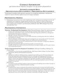 development consultant resume marketing and communications consultant resume samples brefash