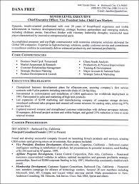 see our professional executive resume writing examplesresume sample – senior level executive