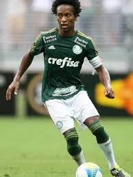 Image result for zé roberto