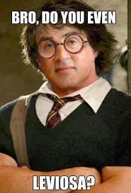 Leviosa | Do You Even Lift? | Know Your Meme via Relatably.com