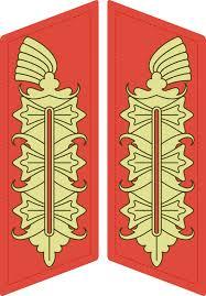General-marechal de campo