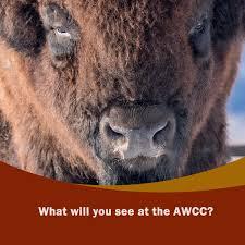 <b>Alaska</b> Wildlife Conservation Center