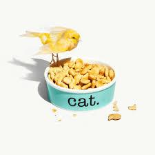 <b>Миска для кошек</b> из костяного фарфора. | Tiffany & Co.