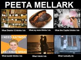 Peeta Meme   english@cc readers and writers via Relatably.com