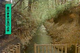 「1654年 - 玉川上水が完成。」の画像検索結果
