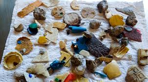 Eating Even <b>One Piece</b> of Plastic Has Health Consequences for ...