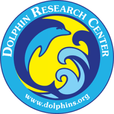 <b>Dolphin</b> Research Center