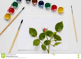 <b>Watercolor</b>, <b>Brushes</b>, Paper And <b>Rose Flowers</b> Are Placed On White ...