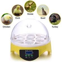 Отзывы на <b>egg incubator</b> quail. Онлайн-шопинг и отзывы на <b>egg</b> ...