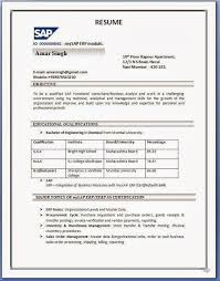 cv format example doc   cover letter buildercv format example doc download my cv in english in ms word formatdoc sap sd resume