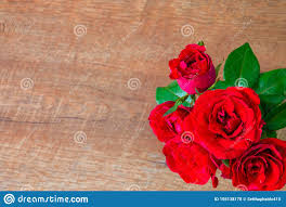 Flat Lay Of <b>Beautiful Rose Red</b> On Wooden Top View Background ...