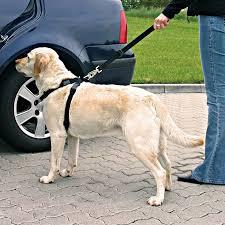 <b>Автомобильный ремень</b> безопасности <b>Trixie</b> для собак - купить в ...