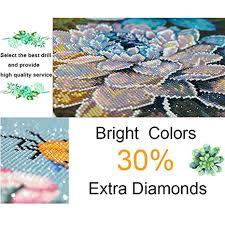 100% Full DIY 5D Diamond Painting Animal Birds ... - Amazon.com