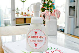 Homemade <b>Peppermint</b> Foaming <b>Hand Soap</b> with Free Printable ...