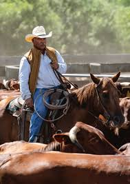 King Ranch Saddle Shop: <b>Leather</b> Goods, Cowboy Boots, Apparel ...