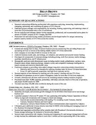 examples of professional summary on a resume template examples of professional summary on a resume