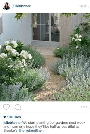 Small Picture Best 25 Lavender garden ideas on Pinterest Lavender care Easy