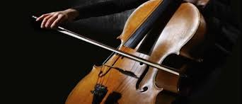 Image result for violoncello
