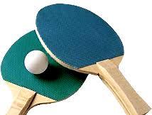 <b>Теннисный стол Donic</b> Indoor Roller 600 Green - Sw-Sport.Ru