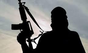Image result for teroristii