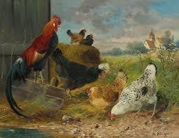 Znalezione obrazy dla zapytania kogut i kura obrazki