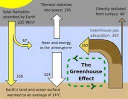 simple essay on environmental pollutionsimple essay on environmental pollution