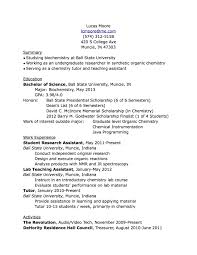 pc skills resume pc skills resumes resume technical skills list computer skills to put on resume templates themysticwindow