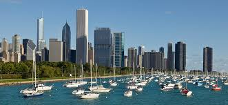 Image result for downtown chicago and trees