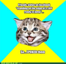 Happy Kitten Meme - Sharenator via Relatably.com