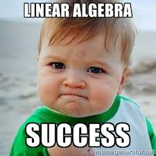 LINEAR ALGEBRA SUCCESS - Victory Baby | Meme Generator via Relatably.com