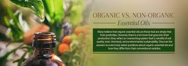 <b>Organic</b> Vs. Non-<b>Organic Essential Oils</b> - A Detailed Breakdown