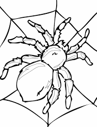 Small Picture Kids Free Halloween Adult Web Free Spider Coloring Sheet Halloween