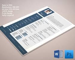 desigenr resume template word formatted resume