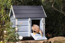 Report Ideas  Delta waterfowl hen house plansDomestic Duck House Plans