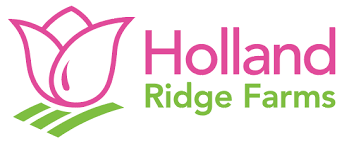 U-Pick Tulips opens April 13th! - Holland Ridge Farms