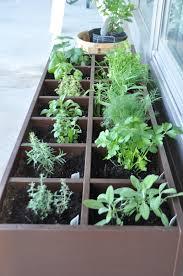 Kitchen Herb Garden Design Garden Design Garden Design With How To Keep The Kitchen Herb