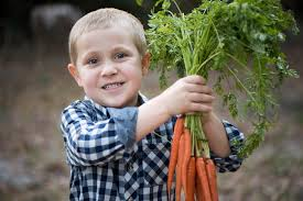is your child s brain starving live simply marrfamily 45