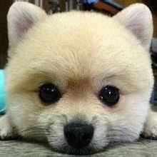 <b>xiaomi</b> (x2201) on Pinterest