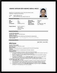 resume  resume format job application  chaoszresume  resume format template resume format  resume format job application