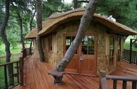 elegant rustic exterior design for tree houses to amazing cool small home