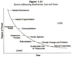 essay on biodiversityessay about biodiversity loss   essay topics factors influencing biodiversity loss and gains