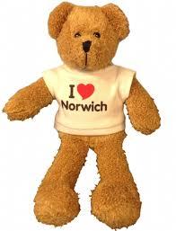Scraggy <b>24cm</b> 9-inch <b>Toy Teddy Bear</b> with I Love Norwich T-shirt