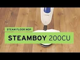 areas reliable brio cc steam cleaner