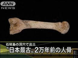 「2010年 - 石垣島で日本最古となる2万年前の人骨発見。」の画像検索結果