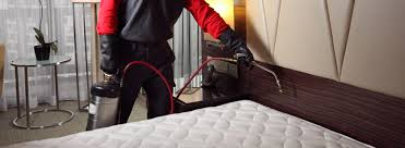 Image result for treating a bedbug infestation