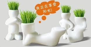 new 1piece creative gift plant hair man plant bonsai grass doll office mini plant fantastic home beautifying office bonsai grass pots planters mini