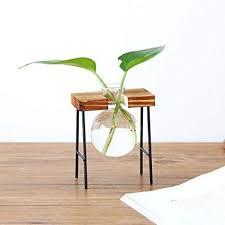 Hot Sale!DEESEE(TM)    Creative Hydroponic Plant ... - Amazon.com