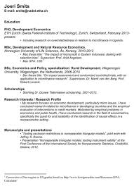netherlands cv template for excel  pdf and wordcv sample   academic careers