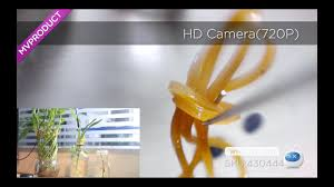 DX:2 In 1 <b>8mm</b> Lens 2.0MP HD <b>720P</b> 6-LED Android&PC Endoscope